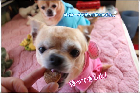 069ALEKUNMO.jpg
