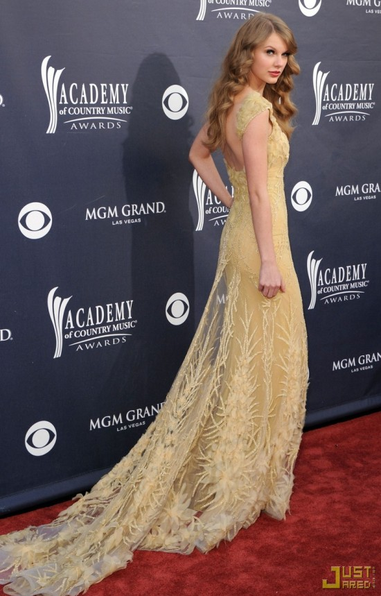 Taylor Swift Attended The 46th Annual Academy of Country Music Awards