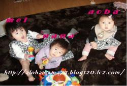 20080129235114.jpg