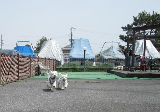 2011GW6-2.jpg