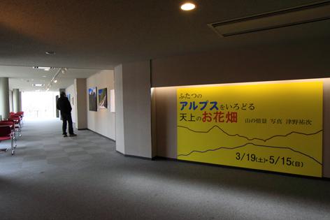 天井のお花畑・1