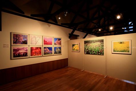 40回企画展・桜と花の絶景・2