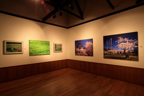 40回企画展・桜と花の絶景・4