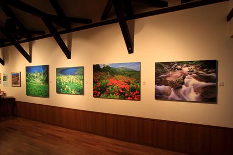 40回企画展・桜と花の絶景・5