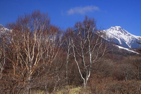 残雪の赤岳・美ノ森