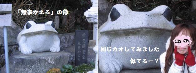 080116hattatiyakusikaeru1.jpg