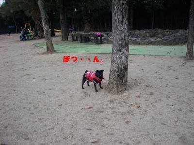 20071229_宝塚ラン4
