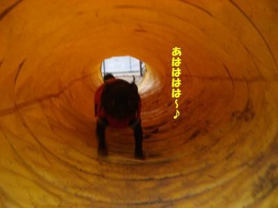 20071229_宝塚ランB