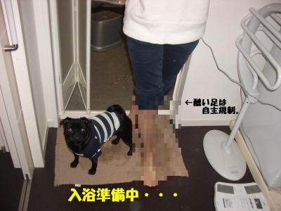 20080119_入浴1