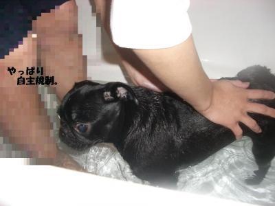 20080119_入浴4