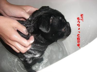 20080119_入浴6