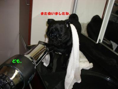 20080119_入浴D