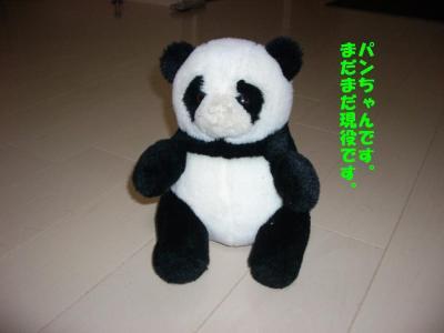 20080121_多頭3