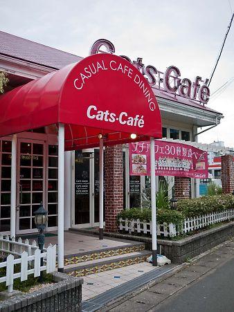 Cat's-Cafe キャッツカフェ