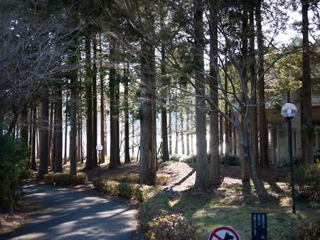 箱根プリンス から見る芦ノ湖