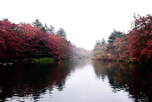 軽井沢 雲場池02