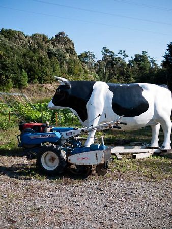 大橋牧場 牛のオブジェ