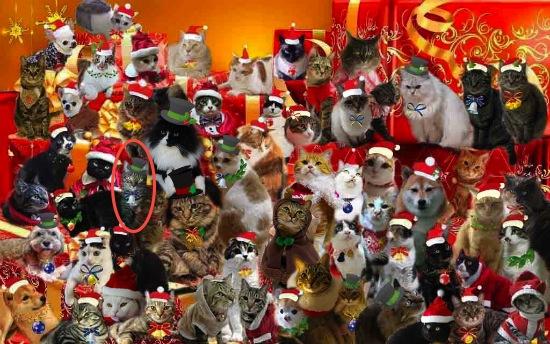 黒ネコさんとクリスマスパーティー3