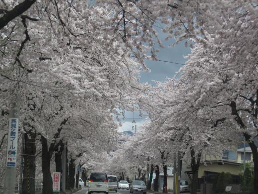 Picture+268_convert_20110514191917.jpg