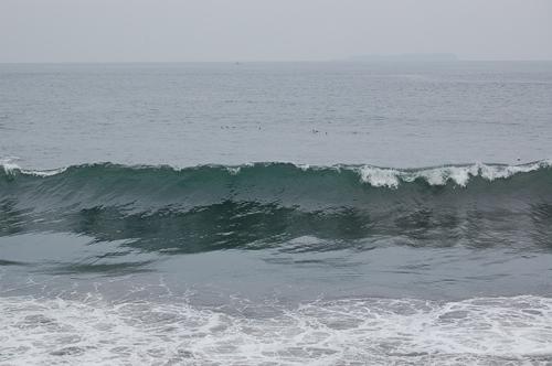 今日は波が高いなぁ