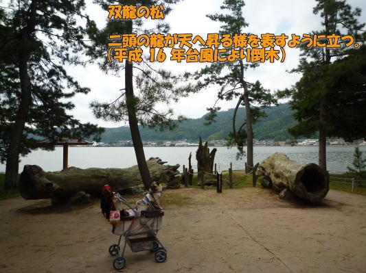 image10_20111002021242.jpg