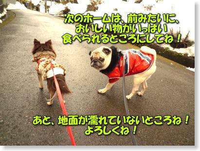 image10_20120202001924.jpg