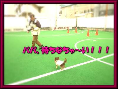 image10_20120309203801.jpg