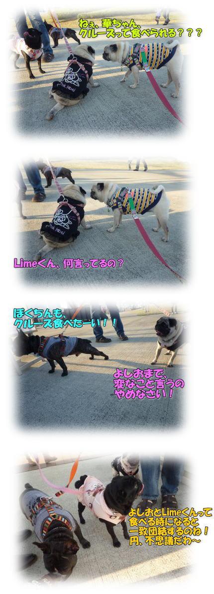 image12_20111104014533.jpg