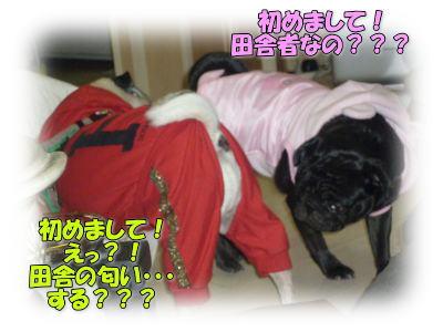 image12_20111110143713.jpg