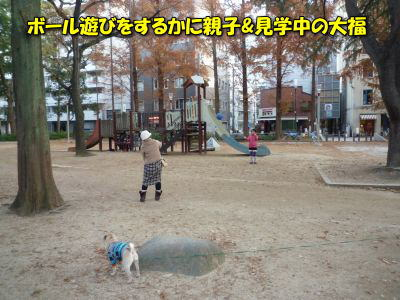 image12_20111227232307.jpg