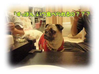 image13_20111110144802.jpg