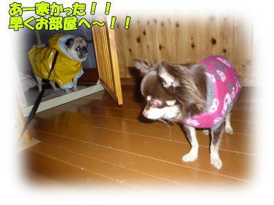 image13_20120115032223.jpg