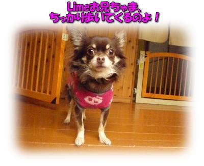 image14_20120115034319.jpg