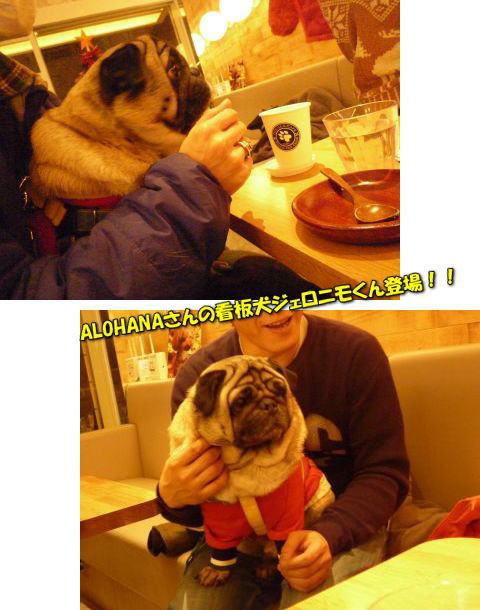 image15_20111227233213.jpg