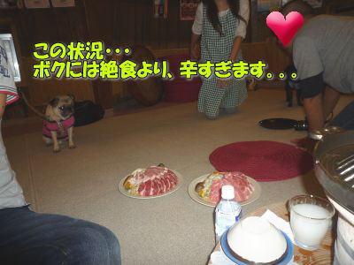image17_20111006232717.jpg