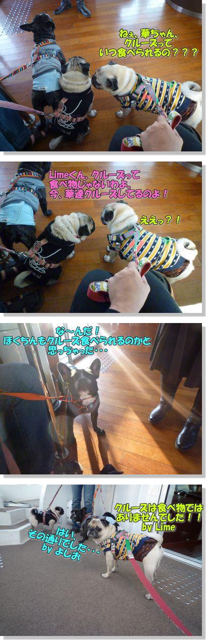 image17_20111105001417.jpg