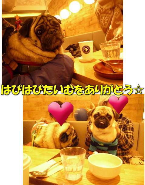 image17_20111227234347.jpg