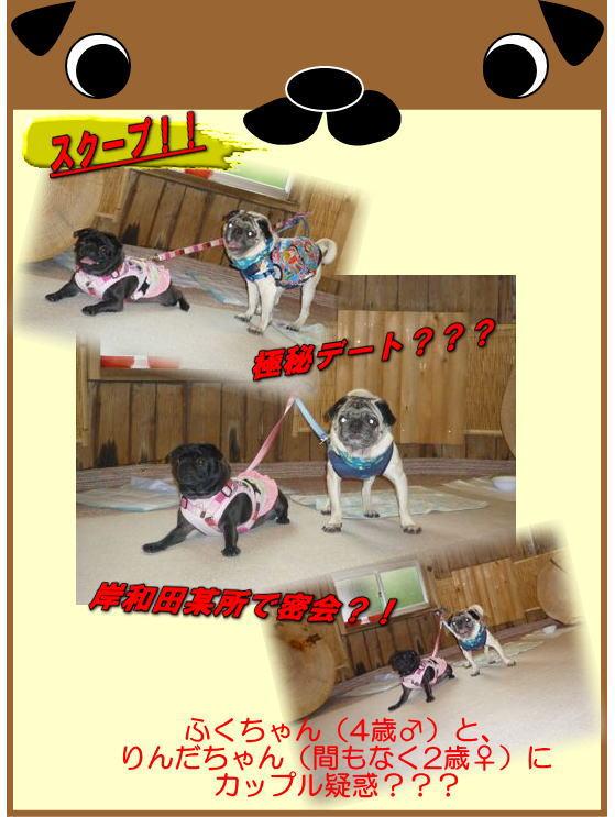 image18_20111008011959.jpg