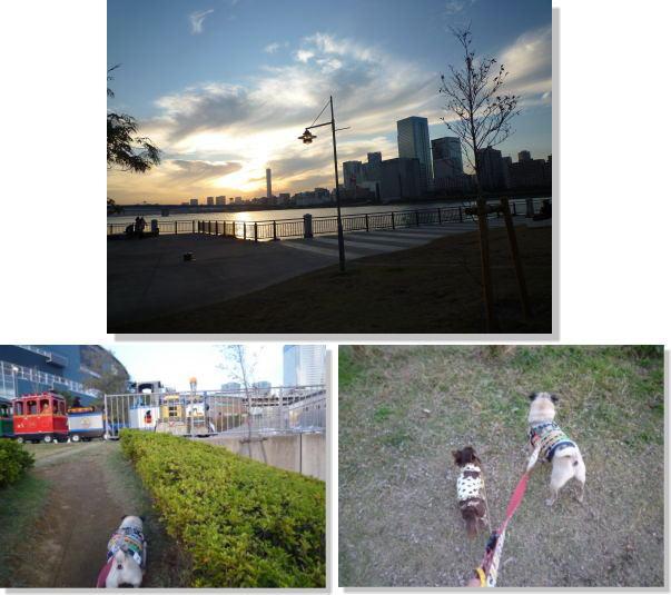image18_20111106125524.jpg