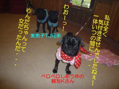 image19_20111008012613.jpg