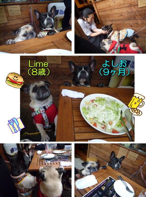 image1_20111108221033.jpg