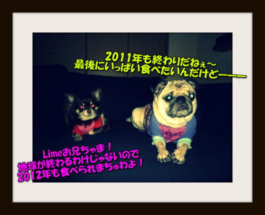 image1_20120119161908.jpg