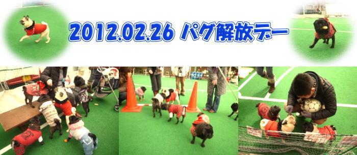 image1_20120310010122.jpg
