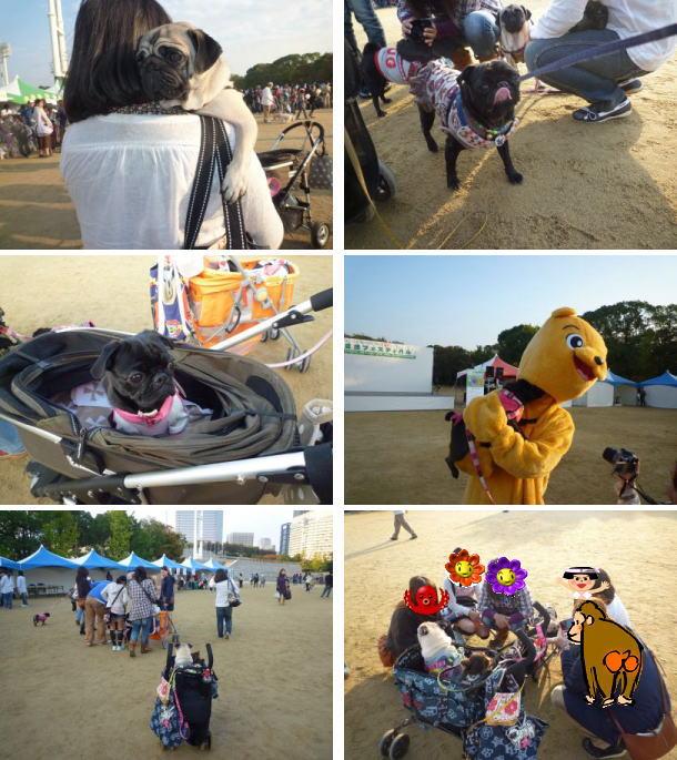 image20_20120122220429.jpg