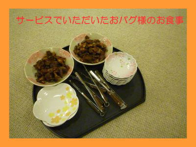 image22_20111008174736.jpg
