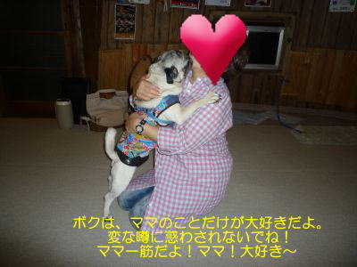 image23_20111008183510.jpg