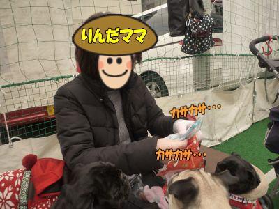 image24_20120324032715.jpg