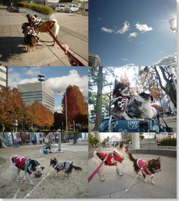 image2_20111226022659.jpg
