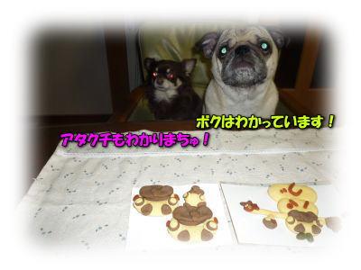 image2_20120112212616.jpg