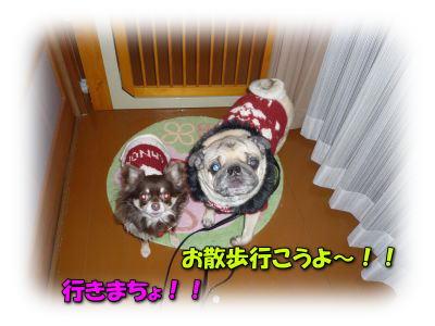 image2_20120217002449.jpg